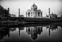 Travel / by Chatty Adad