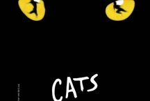 Cats / by Ines Schmook