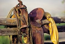 Saddles, chinks, tack / by Lori Cabral