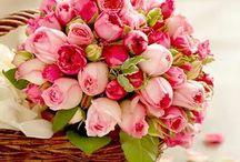 Flowers... / by Vendula Maderska