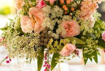 Flowers / by Teresa Johnson