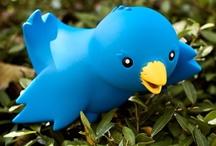 TTT > Twitter. Tweet. Tweeting. / by alvaro ellakuría