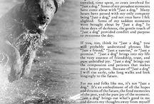 Pets / by Monica Boeckman