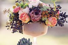 A breath of fresh air / Flowers / by Chelsie Weade