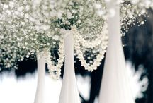 White Wedding Inspiration / Pure, elegant and romantic.  / by Madeline's Weddings & Events