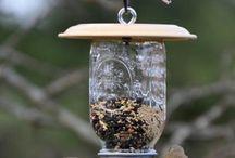 For the Birds! / by Deborah Tuxhorn
