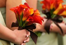 Fall Wedding Ideas / Fall wedding theme, colors, flowers, decorations, favors. / by Basic Invite