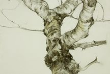 Trees / by Annie Froese