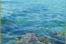 Riviera Maya / by Turtle Tales