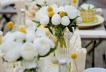 Weddings: The Reception / by Chula Vista Resort