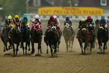 Preakness / by Larry St Andrie