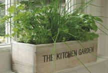 DIY and Decoration: Kitchen / kitchens and their decoration / by Jasmin Pape