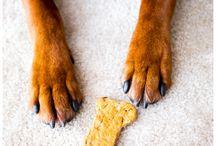Dog treats / by Shaunna Molineux