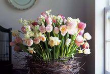 i love flowers / by Kim Jorgensen