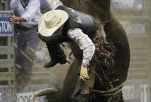 rodeo / by Linda Oliver