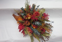 Autumn in Arnold  / by Joleen Bennett
