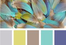Colour Inspiration / by Kerry Bruce