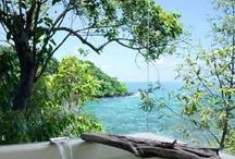 Paradise / by Dolphin Cove Inn