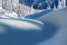Snow / by Yukon Charlie's