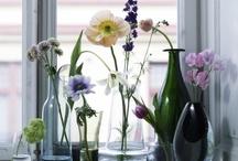 flower and vase / by praneet Cherdjareewatananun