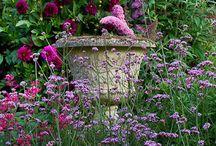 Flowers/Gardening Items / by Rita Barger