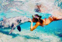 summer lovin! / by KAtie FUchs