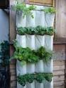 Greenhouse and gardening / by Jennifer Eubank
