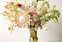 Flowers / by Chris @ Postcards & Pretties
