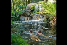 Natural Swimming Pools  / by Grace My Table