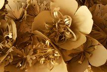 F L O W E R   C L O U D S 1 / make flowerbombs ,not war / by E v a . O n s t e n k