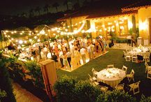 backyard wedding / by Bailey Hulin