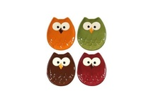 things i want for my Kitchen  / My kitchen is done in avocado and Orange With owls..  / by Crystal Orahood
