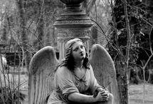 Angels / by Melena Crvts