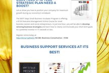 NS-Small Business Incubator / by NEXT Steps YEP