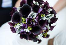 wedding type stuff / by Rachel Ludwig