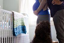 Pregnancy photos / by Rachel Huntley Melton