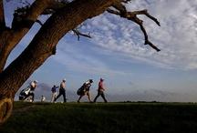 PGA Championship on Kiawah / by Andy Paras