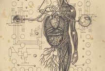 Science / by Gwyn Lewis