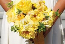 Spring Weddings / by Michele Peterson