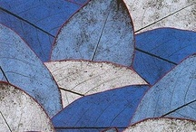 Leaves and Feathers / by Carol Simmons