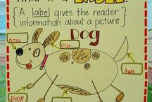 Anchor Charts / by Kathleen Pedersen