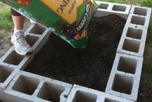 how does your garden grow / by Alison Butler (The Petit Cadeau Blog)