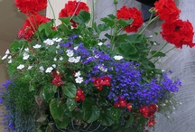 Garden & Landscaping Favorites / by Trudy Smith-Pyles
