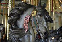 Carousel Horses... / by Denise Linney