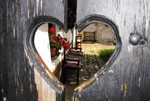 ♪Outdoors & Gardens / by Audrey Merchant