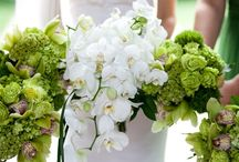 ideas for Chelsea... / July 19, 2104 Fall River, MA country club golf themed-purple dresses and all green florals / by the flower girl