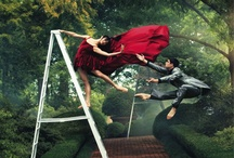 Ballet Photos / Beautiful ballet photos that we find interesting / by The Washington Ballet