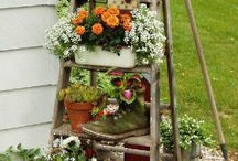 Garden/yard / by Sherry Little