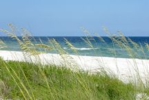 Vacation Spots / by Angie Disher