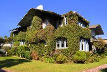 Real Estate I Love / Los Angeles, Venice, Marina Del Rey, Playa Del Rey, Santa Monica, Playa Vista, Culver City, Mar Vista / by Berman Kandel